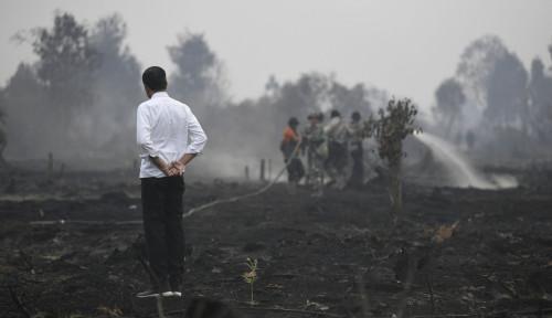 Foto Menteri Pamer Sepatu Kotor Jokowi, Gerindra: Cukup Masuk Got