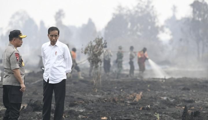 Jokowi Pulang, Riau Makin Sakit - Warta Ekonomi