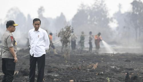 Foto Jokowi Turun, Wiranto Klaim Titik Api Sudah Berkurang