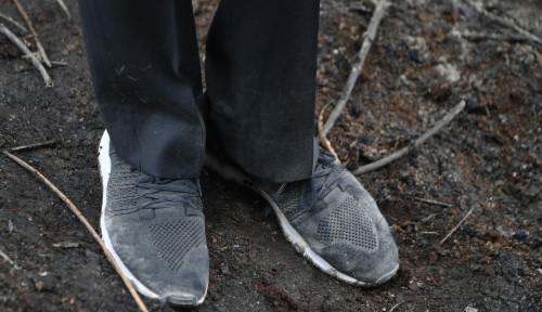 Foto Pamer Sepatu Usai  Tinjau Karhutla, Jokowi Dimarahi Gerindra