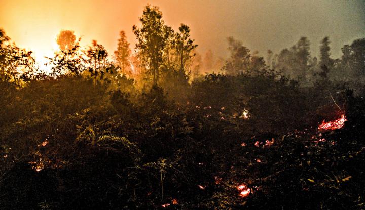 Perbankan dalam Pembiayaan Iklim: Antara Prestasi dan Rapor Merah