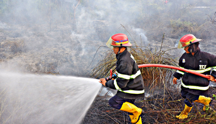 Marak Kebakaran, Gunung Gede dan Pangrango Tetap Dibuka - Warta Ekonomi
