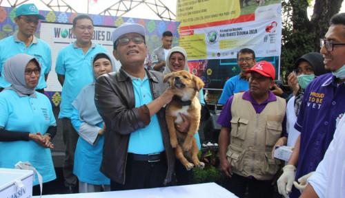 Foto Tingkatkan Kesadaran Masyarakat Soal Rabies, Kementan Lakukan Pendekatan Multi Sektoral