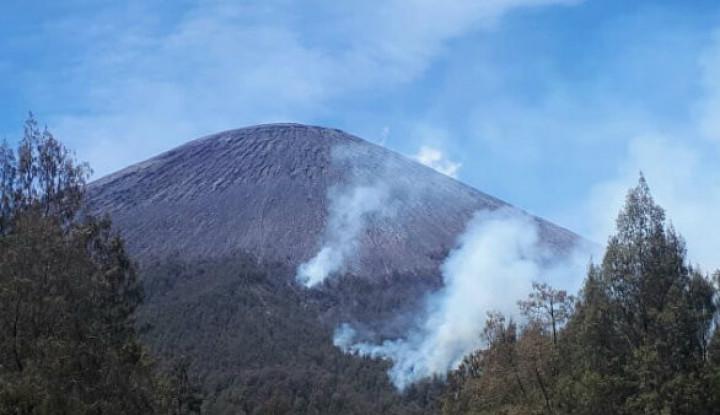 Dua Blok di Gunung Semeru Kembali Terbakar Karena... - Warta Ekonomi