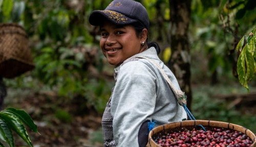 Foto Green Financing Investree-JMC Berdayakan Petani Perempuan