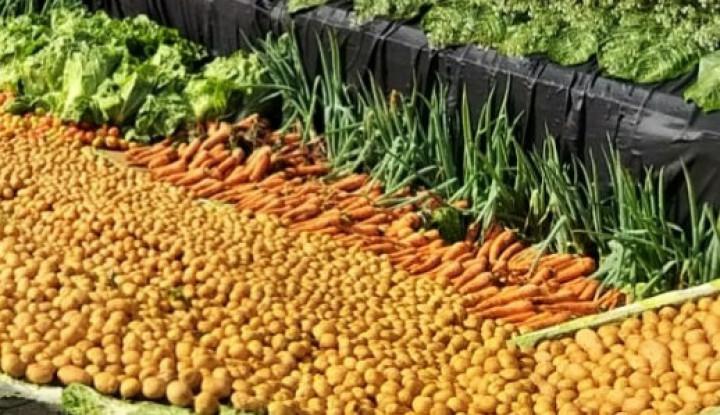 Kementan Kembangkan Sentra Hortikultura di Modoinding - Warta Ekonomi