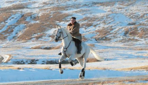Foto Warganet Soroti Wajah Aneh Kim Jong-un Saat Menunggangi Kuda, Seperti Apa?