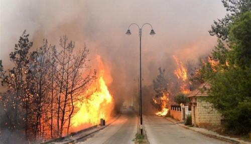 Foto Lebanon Dilanda Kebakaran Hebat, Warga Sebut Seperti 'Hari Penghakiman'