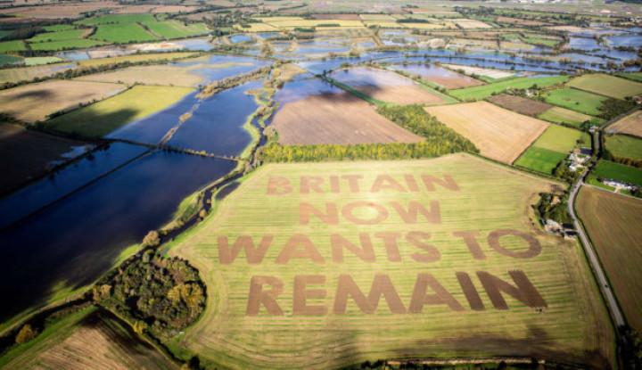 Ladang Jadi Tempat Sampaikan Pesan Penentang Brexit - Warta Ekonomi