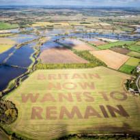 Ladang Jadi Tempat Sampaikan Pesan Penentang Brexit