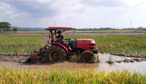 Foto Warek IPB Bangga Ketahanan Pangan dan Kesejahteraan Petani Makin Membaik