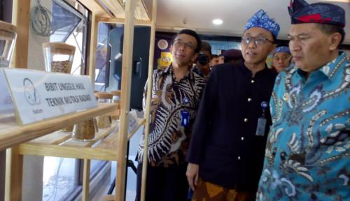 Heboh Paparan Radiasi Nuklir, Wakil Wali Kota Tangsel Buka Suara