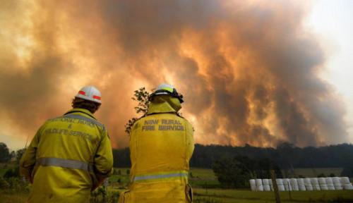 Foto Warga New South Wales Hadapi Kebakaran Hutan Terburuk