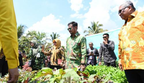 Foto Demi Kedaulatan Pangan, Syahrul Jamin Tak Akan Biarkan Alih Fungsi Lahan
