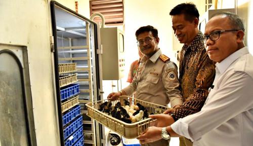 Foto Mentan Syahrul Bangga dengan UPBS Ayam KUB Karena...