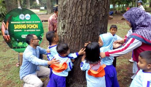 Foto Miris! Lahan Kritis Jabar Tembus 714 Ribu Hektar