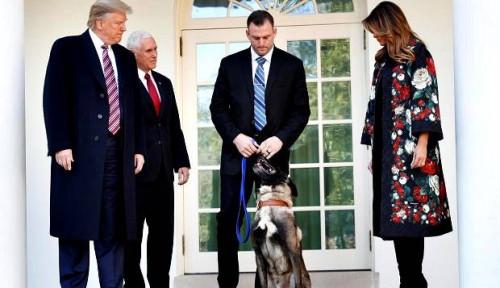 Trump Sambut Conan di Gedung Putih, Anjing Pengejar al-Baghdadi