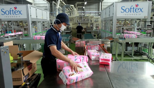 Foto Softex Bangun Pabrik Baru Demi...