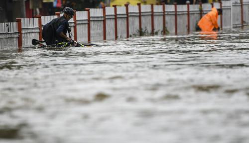 Foto Cerita Banjir Jakarta: Sampah Kiriman Pohon dari Bogor