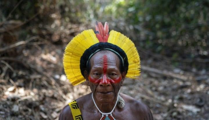 Hebatnya Teh Jambu Bisa Tangkis Virus Corona, Penduduk Amazon: Saya Merasa Sehat Lagi