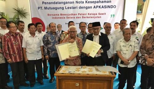MUTU International Dipercaya Apkasindo untuk Tingkatkan Daya Saing Sawit Indonesia