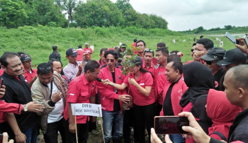 Rangkaian HUT, PDIP Tanam 1500 Bibit Pohon untuk Benahi DAS Citarum