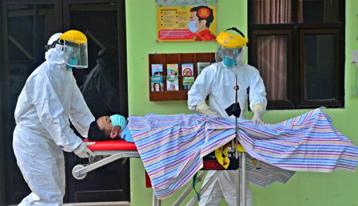 Amankah Makan Daging Kelelawar Inang Virus Corona? - Warta Ekonomi