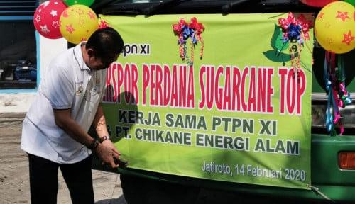 Foto Manfaatkan Sampah Tebu, PTPN XI Ekspor Daduk ke Jepang