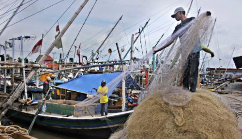 Didukung Telkomsel, Fish On Sediakan Teknologi untuk Nelayan
