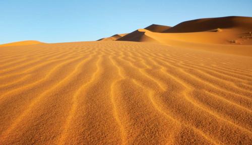 Wow, Ilmuwan Temukan Tulang Belulang Ikan Lele dan Nila di Gurun Sahara