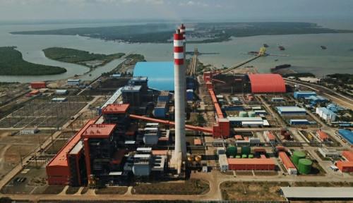 PLN Target Uji Coba Cofiring Biomassa Capai 37 PLTU Tahun Ini