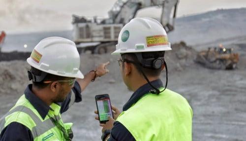 Sepanjang 2019, Petrosea Raup Cuan US$31 Juta