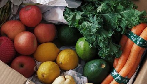 Ini 5 Nutrisi yang Dibutuhkan Tubuh untuk Mendukung Penuaan Lebih Sehat