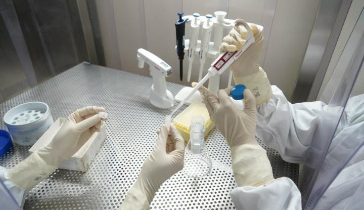 Kata Bos Bio Farma Soal Kehalalan Vaksin Corona