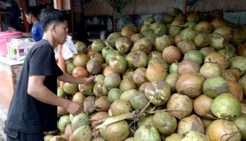 Air Kelapa Bermanfaat untuk Obati Corona?
