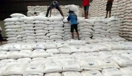 RNI Jamin Harga Minimal Pembelian Gula Petani Rp10.500 per Kg