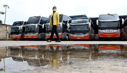 Bisnis di Ujung Tanduk, Operator Bus Minta Perpanjang Bantuan