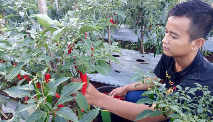 Cetak Enterpreneur Milenial Pertanian, BPPSDMP Adakan Konsolidasi Tim di Polbangtan Bogor