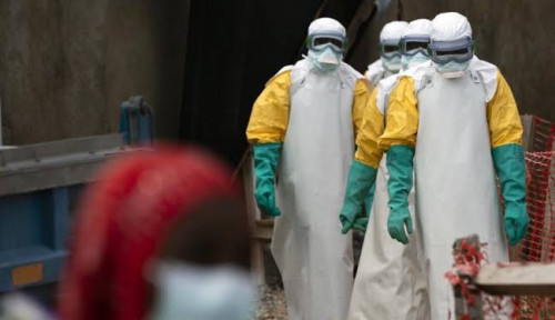 Apa Itu Virus Ebola?