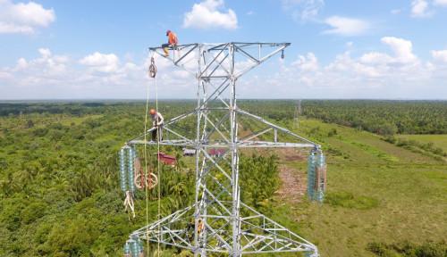PLN Listriki Perusahaan Swasta di Kalimantan Tengah 40 Juta VA