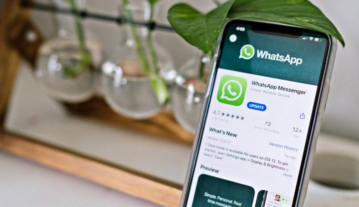 WhatsApp Pay Resmi Ditolak!