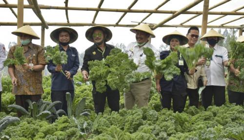 Kuatkan Ketahanan Pangan Perdesaan melalui Regenerasi Petani