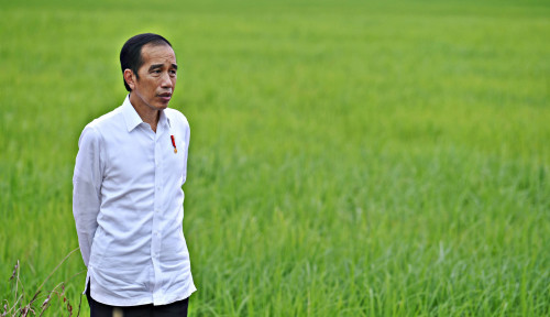 Jokowi Teken PP Pengalihan Pegawai KPK jadi ASN