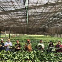 Mentan Dorong Perusahaan Anggrek Buka Akses ke Seluruh Dunia