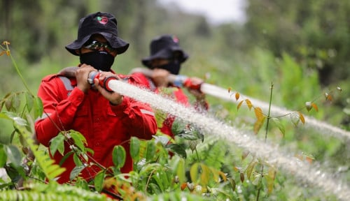Komitmen Gapki Riau Capai Zero Fire Case