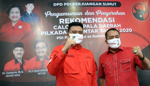 Kader Senior PDIP Tolak Usung Bobby-Aulia, Kenapa?