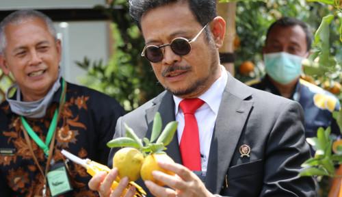 Launching TSP Jeruk, Mentan: Kita Siapkan Pertanian, Yuk!