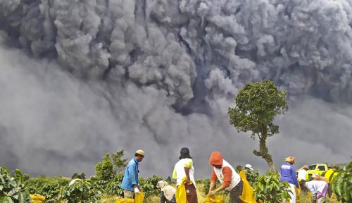 Erupsi Gunung Sinabung Menyembur 500 Meter