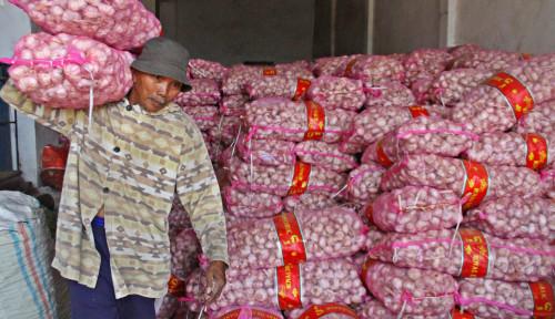 Waduh, Harga Bawang Putih Bakalan Naik, KPPU: Sudah Biasa, Pola Berulang Tiap Tahun