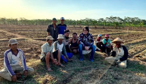 Libatkan Petani Lokal, Startup Ini Target Ekspansi Lahan 2.500 Ha
